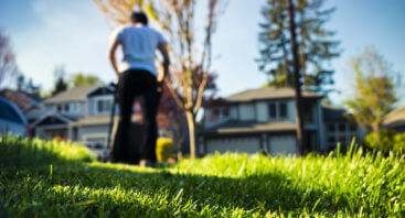 Example of lawn care professional
